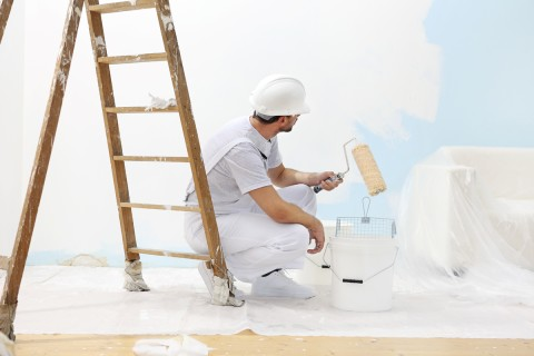 All You Need To Know About Wall Painting